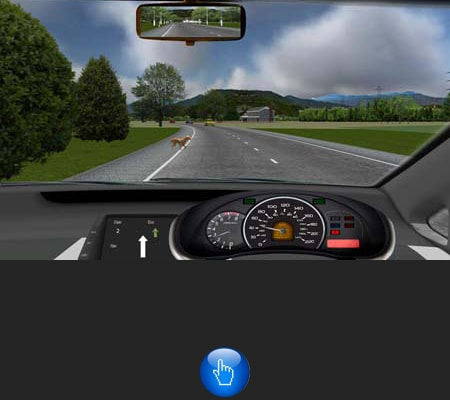 clinical driving simulator